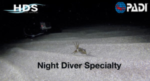 night_diver_page