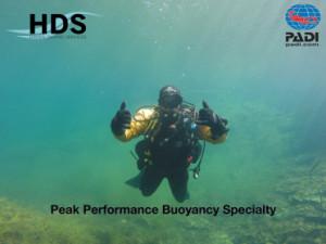 peak_performace_page